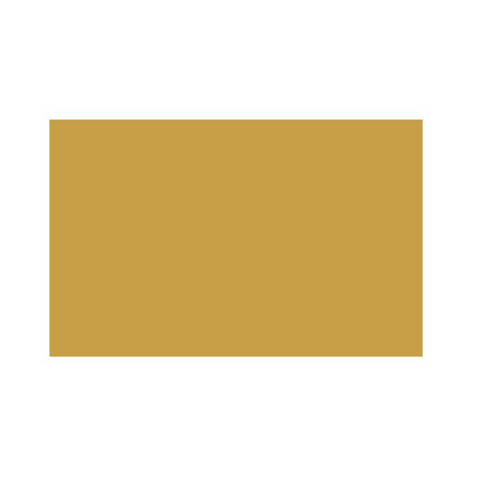 wildcat-logo